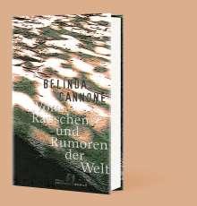 Belinda Cannone: Vom Rauschen und Rumoren der Welt, Buch