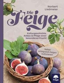 Norbert Liedmeier: Die Feige, Buch