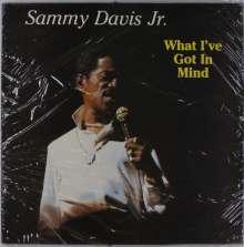 Sammy Davis Jr.: What I've Got In Mind, LP