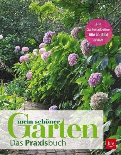 Mein Schoner Garten Mein Schoner Garten Buch Jpc