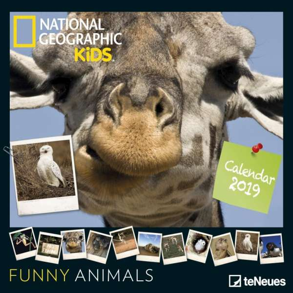 National Geographic Kids Funny Animals 2019 Broschürenkalender