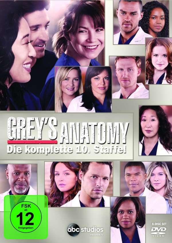 Greys Anatomy Season 10 6 Dvds Jpc