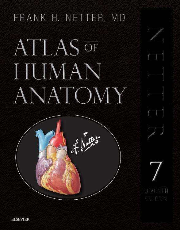 Atlas Of Human Anatomy Professional Edition Frank H Netter Buch