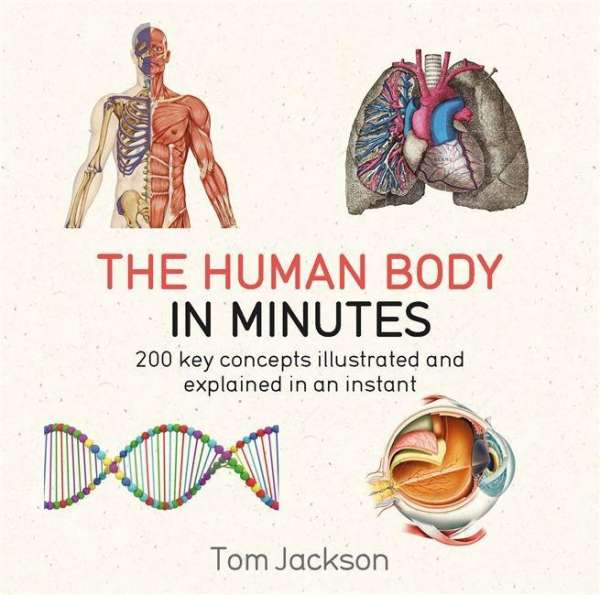 The Human Body In Minutes Tom Jackson Buch Jpc