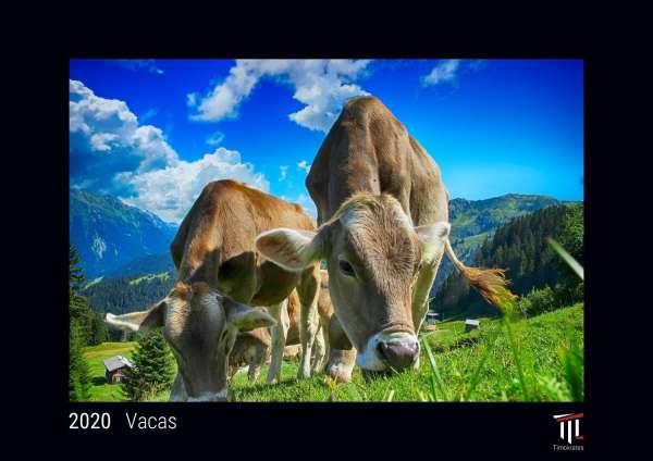 Calendario Din A4.Vacas 2020 Edicion Negra Timokrates Calendario De Pared Calendario De Fotos Din A4 Ca 30 X 21 Cm