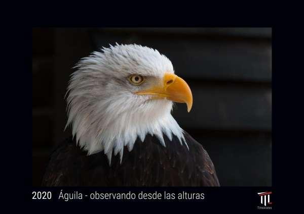 Calendario Din A4.Aguila Observando Desde Las Alturas 2020 Edicion Negra Timokrates Calendario De Pared Calendario De Fotos Din A4 Ca 30 X 21 Cm