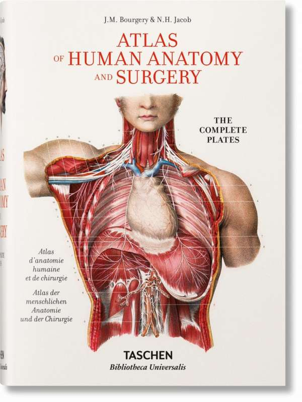 Bourgery. Atlas of Human Anatomy and Surgery - Jean-Marie Le Minor ...