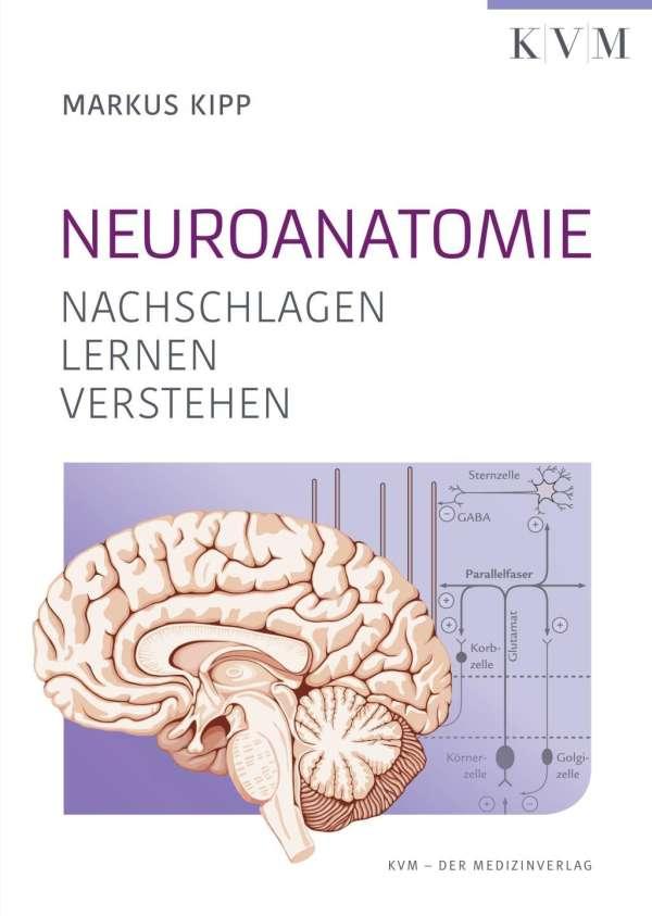 Neuroanatomie - Markus Kipp (Buch) – jpc