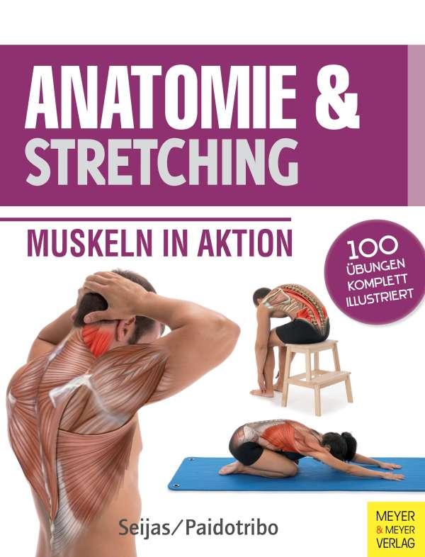 Anatomie & Stretching (Anatomie & Sport, Band 2) - Guilermo Seijas ...