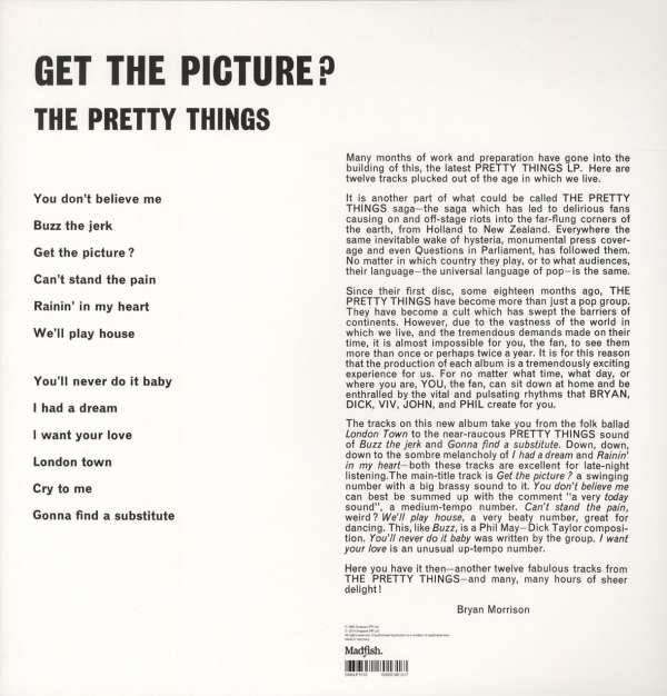 The Pretty Things Get The Picture 180g Limited Edition Lp Jpc